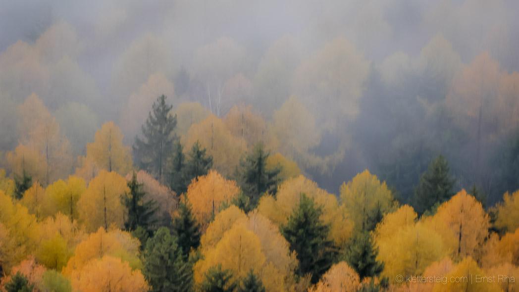 Herbst am Kapf